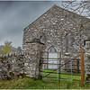 Scotland  Cairngorms Old Struan 7 May 2019