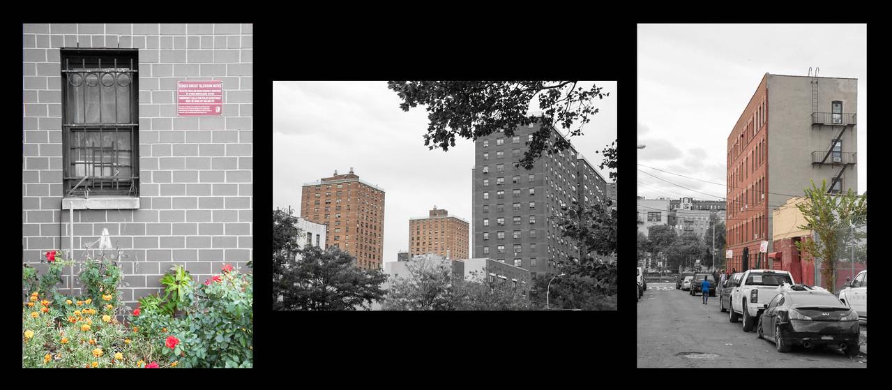 The ubiquitous Bronx Brick Building