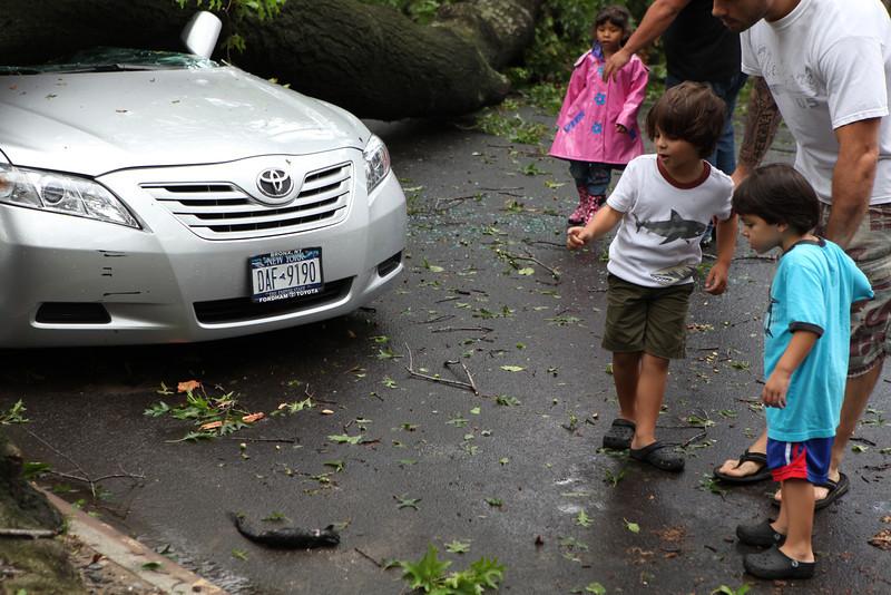 Children notice a baby squirrel that didn't make it. :/