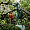 Fallen tree at Barnard College.
