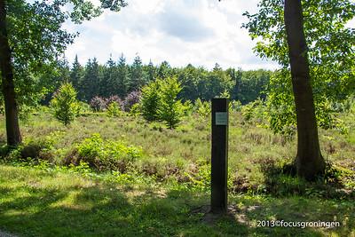 nederland 2013, hooghalen, herinneringskamp westerbork