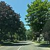 I took a brief detour into Saratoga Springs, New York.  What a beautiful place.