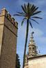 Seville15
