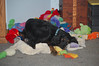 Kidder likes to lay in the big pile o' toys.