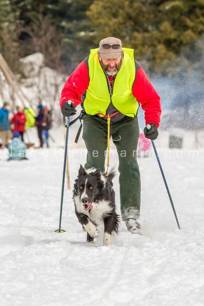 Dog Days of Winter 2015