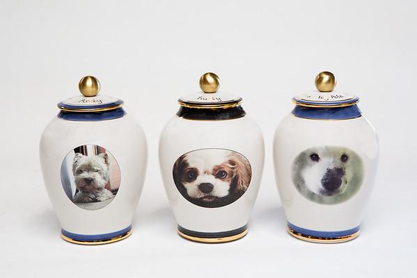 Custom Pet Photos