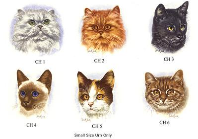 Cat Breeds 2