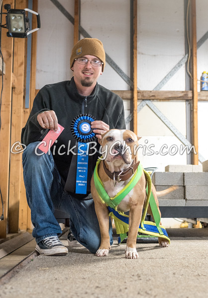Northern IL K9 Association (NIKA) Fun Match Weight Pull UKC - Southtown K9 - Saturday, March 25, 2017