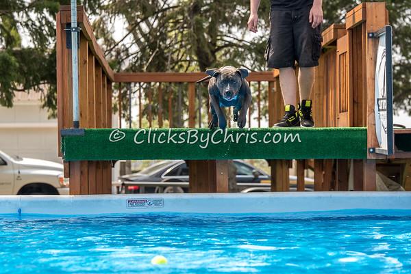 Open Dock - Sunday, April 24, 2016 - Frame: 8554