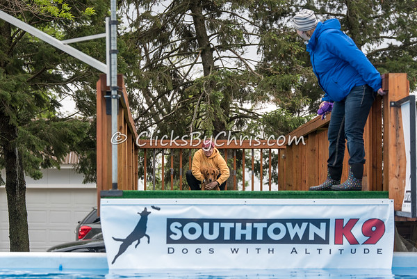 Southtown K9 Trial - Sunday, May 1, 2016 - Frame: 8894