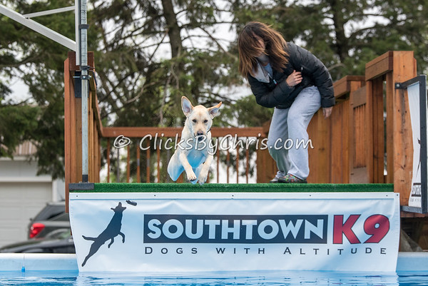 Southtown K9 Trial - Sunday, May 1, 2016 - Frame: 8882