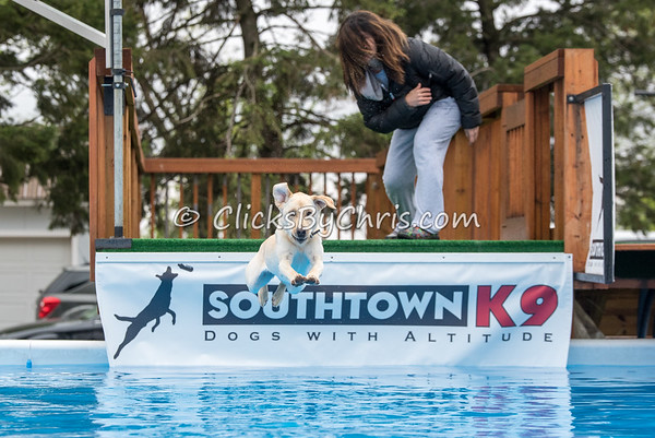 Southtown K9 Trial - Sunday, May 1, 2016 - Frame: 8883
