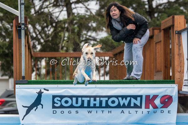 Southtown K9 Trial - Sunday, May 1, 2016 - Frame: 8890
