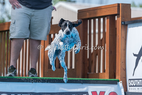 Dock Diving Competition - Southtown K9 - Saturday, May 13, 2017