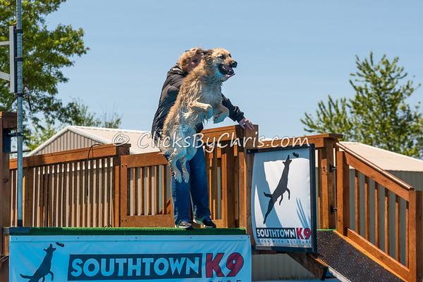 Open Dock - Southtown K9 - Sunday, May 15, 2016