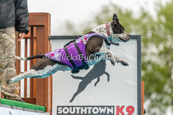 NIKA Dock Diving - Northern Illinois K9 Association - Southtown K9 - Sunday, May 20, 2018