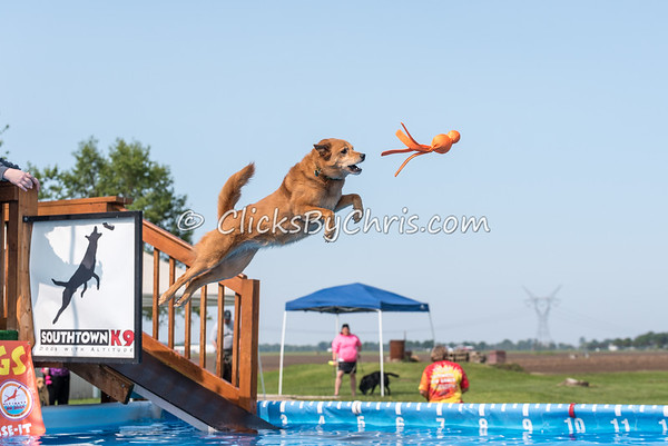 UAD / UKC Dock Diving Competition - UAG Regional Qualifier - Southtown K9 - Saturday, May 21, 2016