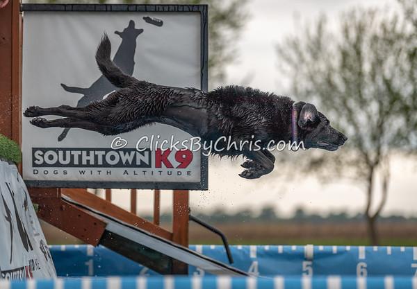 NIKA Memorial Day Bash 2019 - Dock Jumping Held at Southtown K9 on Saturday, May 25, 2019