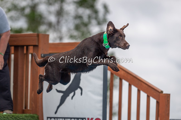NIKA Memorial Day Bash 2019 - Dock Jumping Held at Southtown K9 on Saturday, May 25, 2019