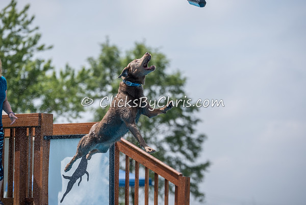 NIKA UKC Dock Diving Competition - Southtown K9 - Saturday, May 27, 2017