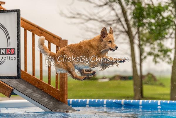 NADD / AKC Trial - Saturday, May 30, 2015 - Frame: 1352