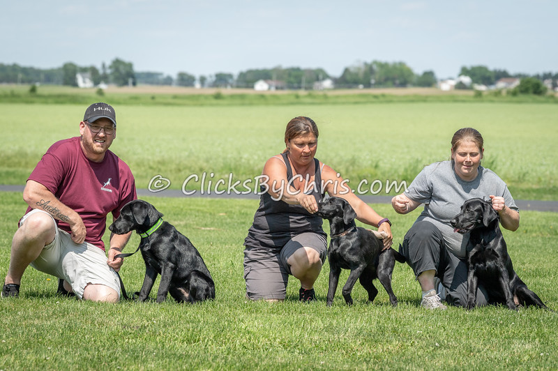 Jaeger, Ember, and Bear - NADD / AKC Dock Diving Trial - Southtown K9 - Sunday, June 2, 2019