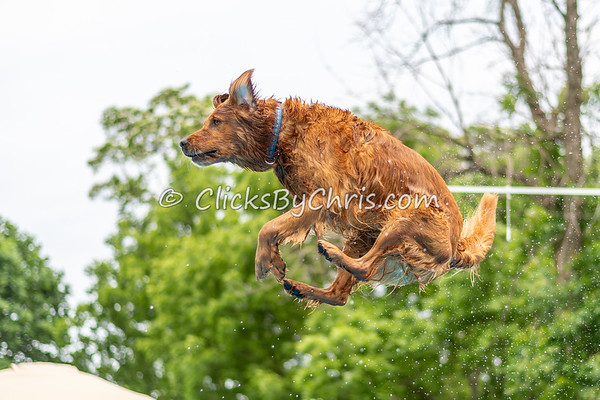 NADD / AKC Dock Diving Trial - Southtown K9 - Saturday, June 2, 2018