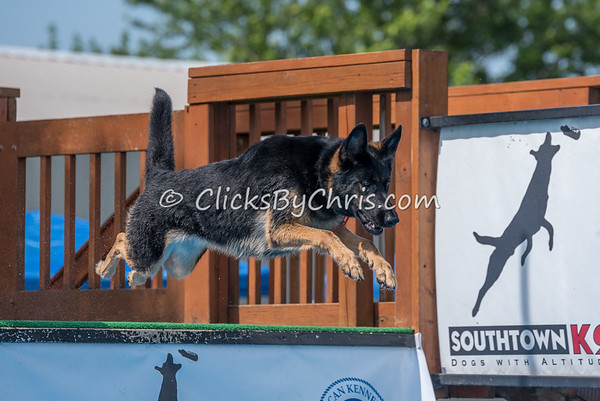 NADD / AKC Dock Diving Trial - Southtown K9 - Saturday, June 3, 2017