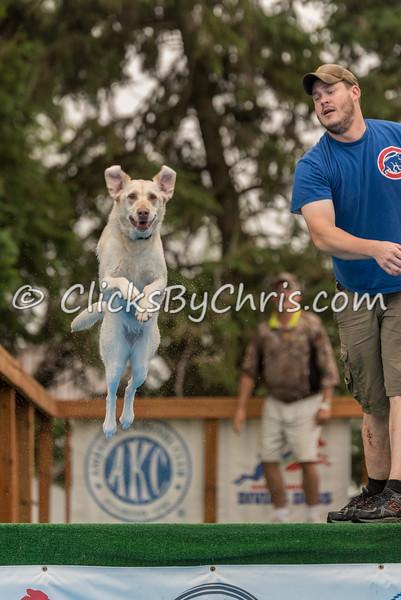 NADD / AKC Trial - Saturday, June 13, 2015 - Frame: 2717