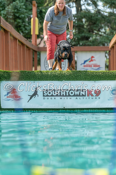 NADD / AKC Dock Diving - Southtown K9's Air Retrieve and Hydro Dash Bash Competition at Southtown K9 on Sunday, June 21, 2020