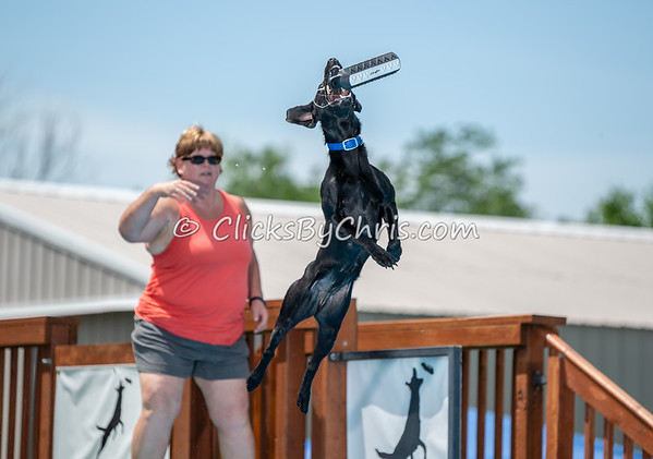 Open Dock - Southtown K9 - Sunday, June 24, 2018