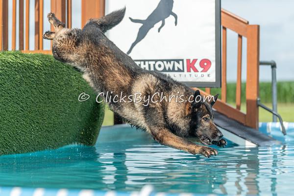 NIKA / UKC Dock Diving at Southtown K9 on Sunday, June 28, 2020