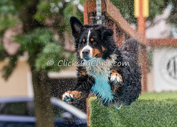 Fun Jump: Splash-04 06/27/2021