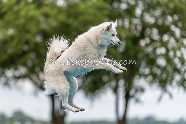 Fun Jump: Splash-05 06/27/2021