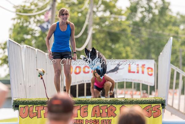 UAD Petunia Festival - Saturday, July 4, 2015 - Frame: 5659