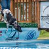 Open Dock - Sunday, July 5, 2015 - Frame: 5769