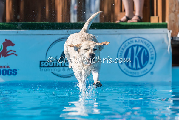 NADD / AKC Dock Diving Trial - Southtown K9 - Saturday, July 9, 2016