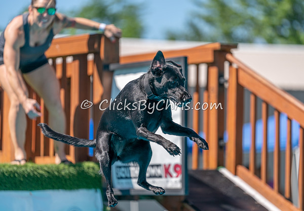 Distance - NADD / AKC Dock Diving - National Qualifiers at Southtown K9 on Friday, July 10, 2020