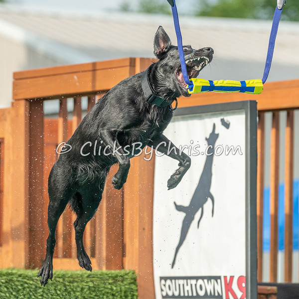 Air Retrieve - NADD / AKC Dock Diving - National Qualifiers at Southtown K9 on Saturday, July 11, 2020