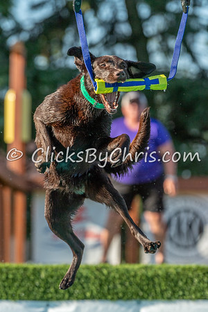 Air Retrieve - NADD / AKC Dock Diving - National Qualifiers at Southtown K9 on Sunday, July 12, 2020