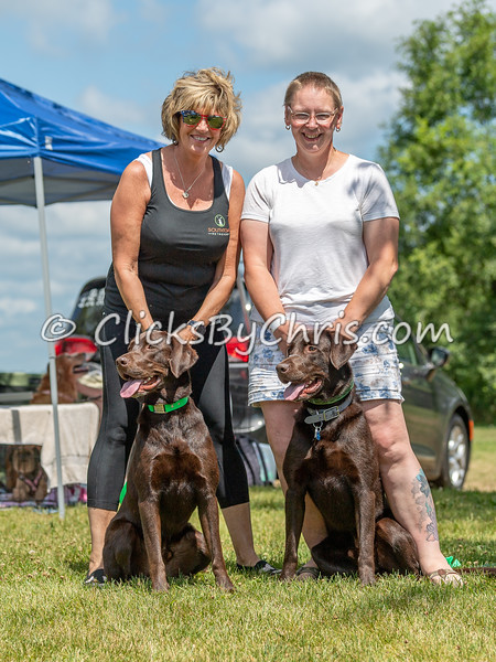 Misc - NADD / AKC Dock Diving - National Qualifiers at Southtown K9 on Sunday, July 12, 2020