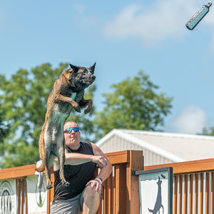 Distance - NADD / AKC Dock Diving - National Qualifiers at Southtown K9 on Sunday, July 12, 2020