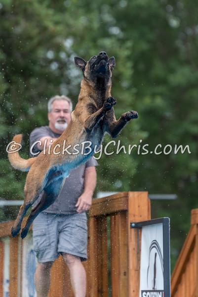 NADD / AKC Trial - Saturday, July 11, 2015 - Frame: 5841