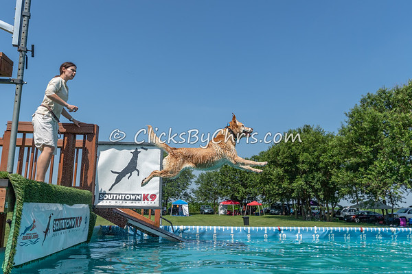 NADD / AKC Dock Diving Trial - Southtown K9 - Sunday, July 14, 2019