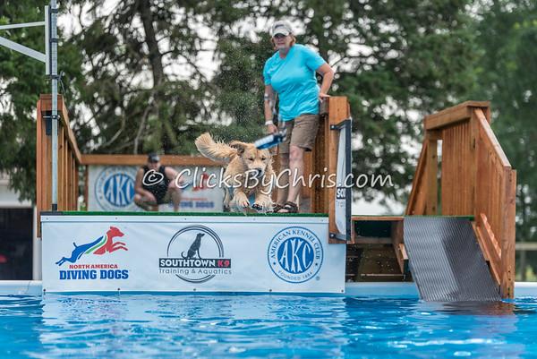 NADD / AKC National Qualifier - Sunday, July 26, 2015 - Frame: 8076