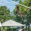 NADD / AKC National Qualifier - Sunday, July 26, 2015 - Frame: 9078