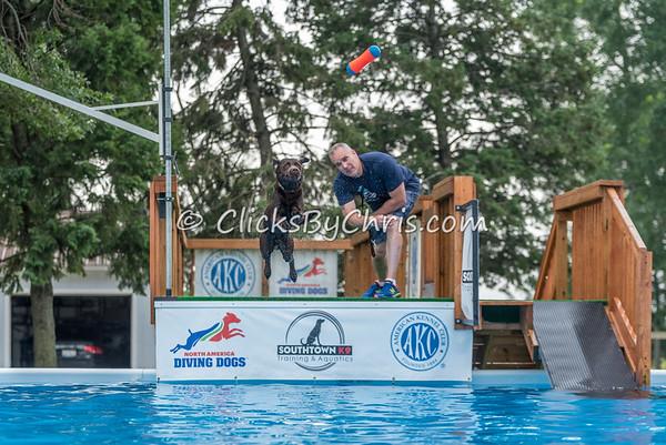 NADD / AKC National Qualifier - Sunday, July 26, 2015 - Frame: 8079