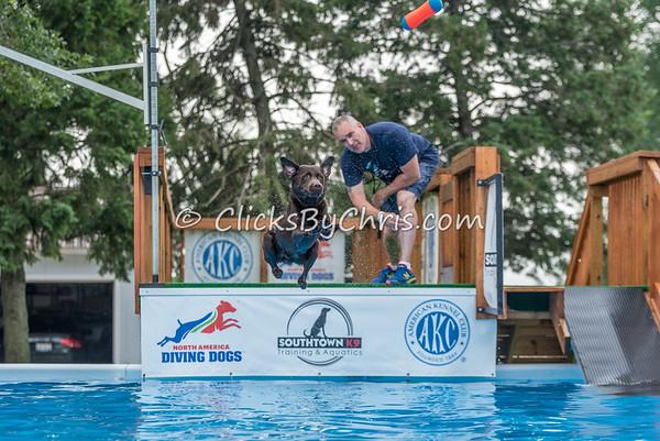 NADD / AKC National Qualifier - Sunday, July 26, 2015 - Frame: 8080