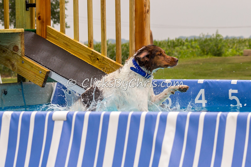 Fun-Jump-20140726-0014