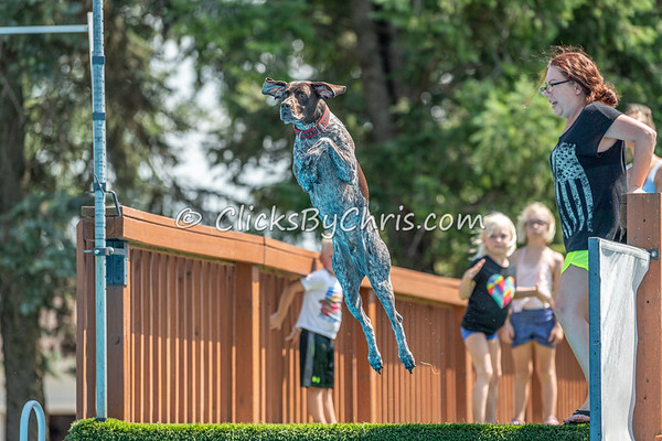 NIKA Dock Diving - Northern Illinois K9 Association - Southtown K9 - Saturday, July 27, 2019